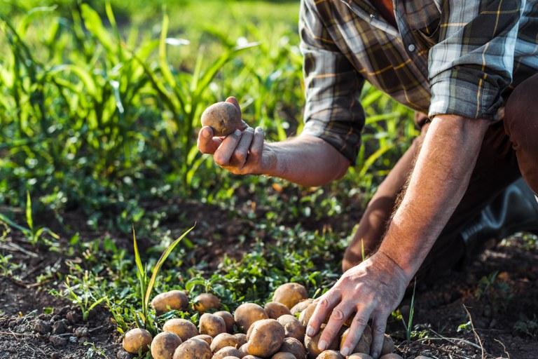 Objetivo é democratizar o acesso a crédito em melhores condições a pequenos e médios produtores agrícolas