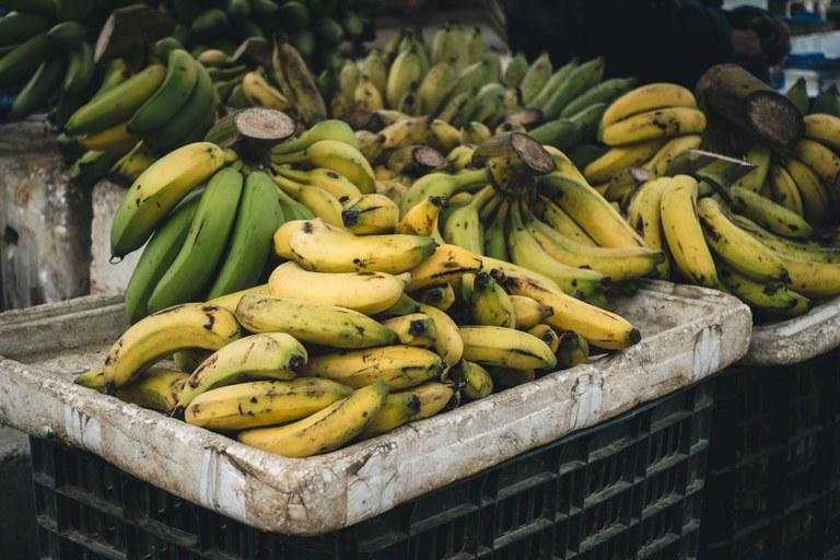 A banana é um dos produtos com bônus de desconto nas operações e parcelas de crédito rural.